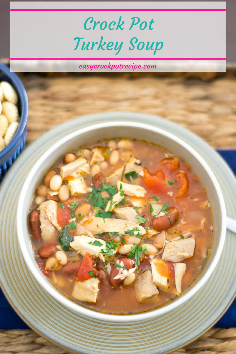 Crock Pot Turkey Soup recipe via easycrockpotrecipe.com